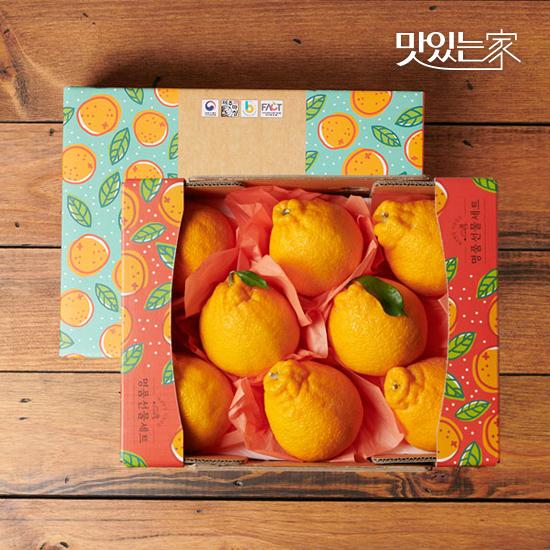 [맛있는家]한라봉 + 천혜향 1+1 설 선물세트<2kg/3kg>