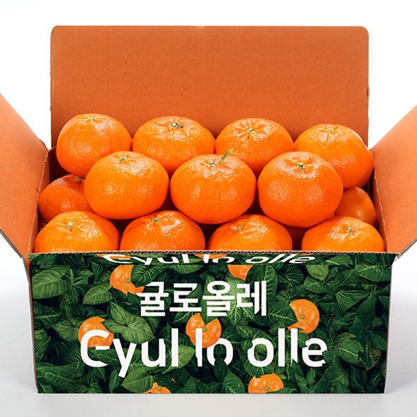 제주직송 귤로올레 햇 레드향5Kg이쁜이중과가정용/벌크